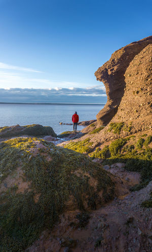 Lonely Boy Bay Of Fundy Blue Sky Canada Freedom Golden Hour Hopewell Rocks Hopewell Rocks Park Horizon Over Water Landscape Lonely Male Man Morning Light Nature New Brunswick, Canada Rear View Red Jacket Rock Formation Sea Plants Shade Solitude By The Water Sunrise Travel
