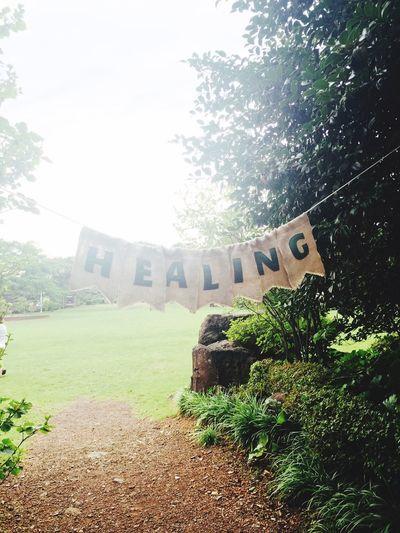Healing Healing JEJU ISLAND
