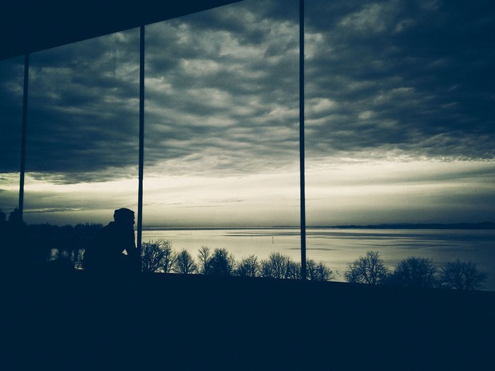 Looking through the silence Festspielhaus Bregenz Architecture Beauty In Nature Cloud - Sky Day Daydreaming Fall Lake Looking Through Nature Outdoors Silence Silhouette Sky Sunset Thinking About Life Tree Window