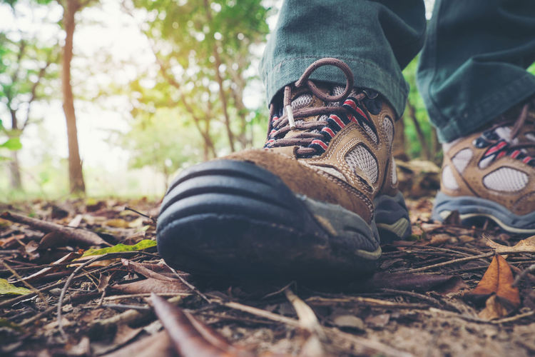 Low section of man wearing shoes on dirty field in forest