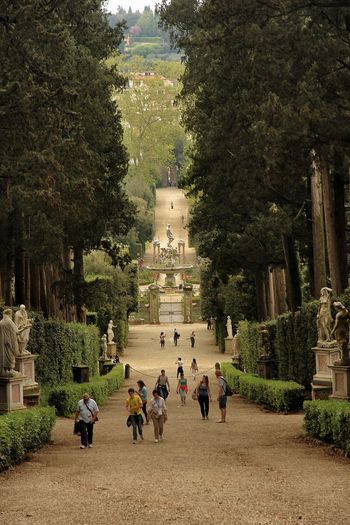 Firenze Florence, Italy Giardino Di Boboli Italia Italian Garden Public Park Tuscany Boboli Garden Park
