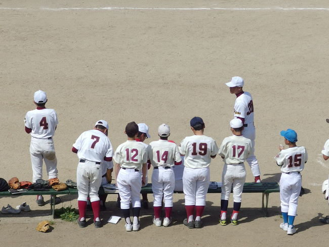 Japanese young baseball team training at the park. Group Of People Men Day Boy Team Teamwork Sport Young Planning Garden Games Park Outdoors Trainning Playing Ground Yard Field Place Learning Uniform Ichikawa Lifestyles Hobby Light