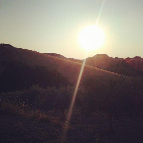 Natura Sole Alba