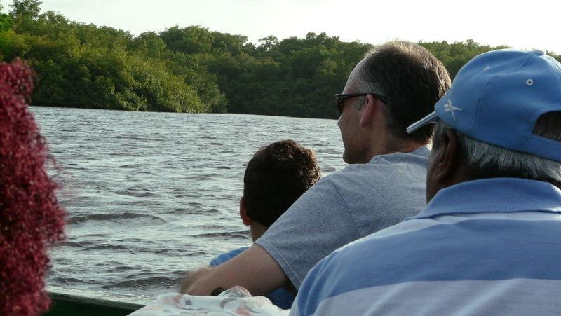 Feel The Journey Trinidad And Tobago Bird Sanctuary Caroni Swamp Hugging Boat Ride