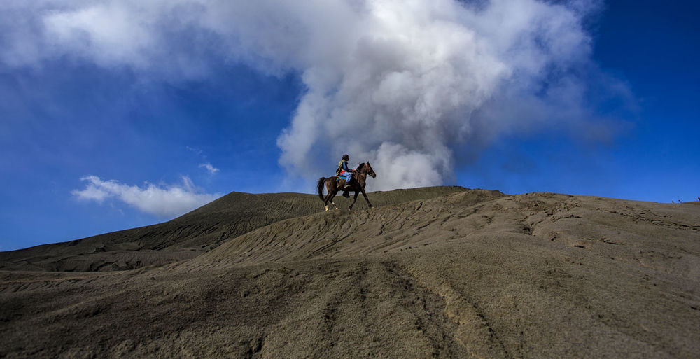 The Rider in VOlcano Beauty In Nature Bromo Bromo Mountain Indonesia Bromo Tengger Semeru National Park Cloud - Sky Day Domestic Animals Eruption🗻 Horse Mammal Men Motion Nature One Man Only One Person Outdoors Physical Geography Real People Rider Riding Sitting Sky Volcano Volcano Eruption Volcano Landscape