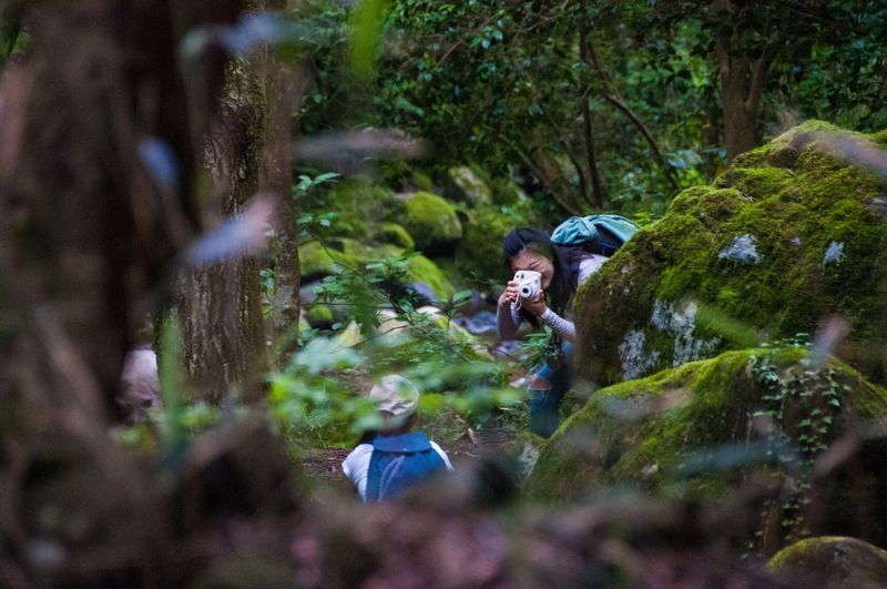 Feel The Journey Forest Girls Girl Adventure Wild Nature Camera Ultimate Japan