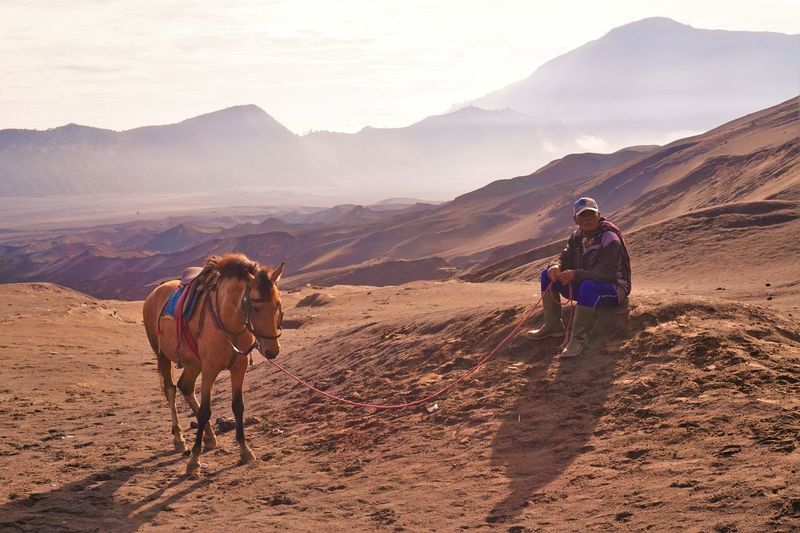 Full length of man sitting by horse at desert against mountains