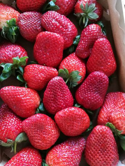 Directly above view of strawberries