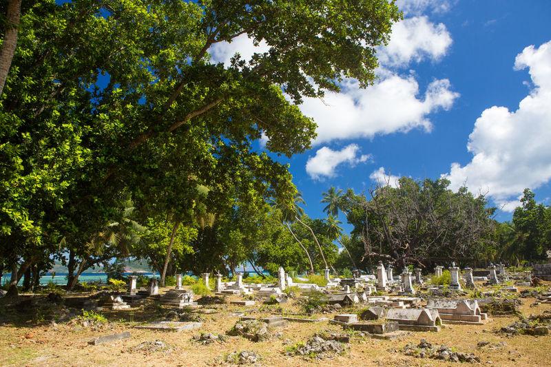 La Digue Anse Lazio Anse Source D'argent Day Growth Mahé Nature No People Outdoors Praslin Seychelles Sky Tree
