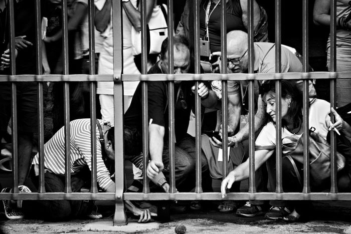 Saving hedgehog Ryan. Animal In Distress Behind The Bars Black And White Candid Candid Photography Candid Portraits Candid Shots City Life Hedgehog Helping Out Helping People Large Group Of People Lifestyles Monochrome Photography Outdoors Reaching Out Rome Street Street Life Street Photography Tourism Tourists Thestreetphotographer The Street Photographer - 2017 EyeEm Awards Stories From The City Adventures In The City