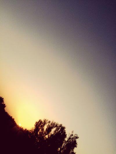 الصبح اذا تنفس 🌸 فضاوه  السعودية  تصوير  Saudi Pic تصويري  صغار شروق الشمس شمس
