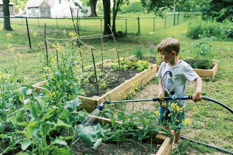 Rear view of boy holding plants in yard