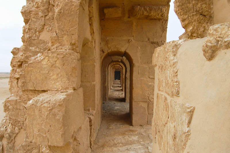 Resafa Ruins - Syria Desert Resafa Resafa Ruins Syria  Ancient Ancient Civilization Old Ruin