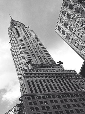 Chrysler Height ~ NYC 2014 Architecture Chrysler Building EyeEm Best Shots EyeEm Bnw