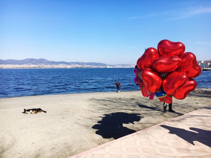 Red Clear Sky Sunlight Sea Beauty In Nature Nature Water Sky Outdoors Horizon Over Water Flower Beach Day No People Scenics Freshness Baloons