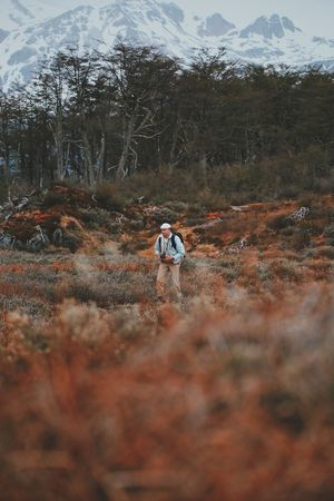 Tree Leisure Activity Two People Lifestyles Nature Real People Plant Rear View Day Men Mountain Land Walking Full Length Beauty In Nature Forest Women People Field Non-urban Scene Outdoors Mature Men