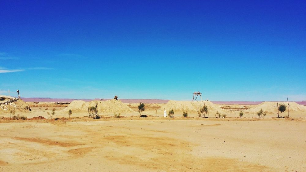 EyeEm Selects Sand Desert Sand Dune Sunny Blue Nature Outdoors Sky Arid Climate Landscape Clear Sky Animal Day Animal Themes Heat - Temperature Animal Wildlife Scenics Animals In The Wild No People Mammal Khettara in Errachidia Morocco