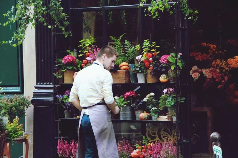 Sunny Day OpenEdit Traveling City Paris France Paris, France  Flowers Flower Photography Man Flower Shop