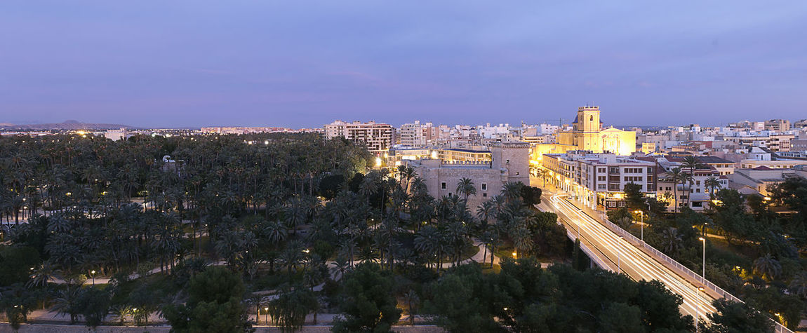 Views panoramic of Elche city at sunset in front of the palm grove. Province of Alicante in Spain. Alacant Alicante Alicante Province Spain Christmas Elche Elx SPAIN Spanish Travel Architecture Building Exterior Built Structure Chrismas Lights City Cityscape Illuminated Night No People Outdoors Sky Travel Destinations Tree