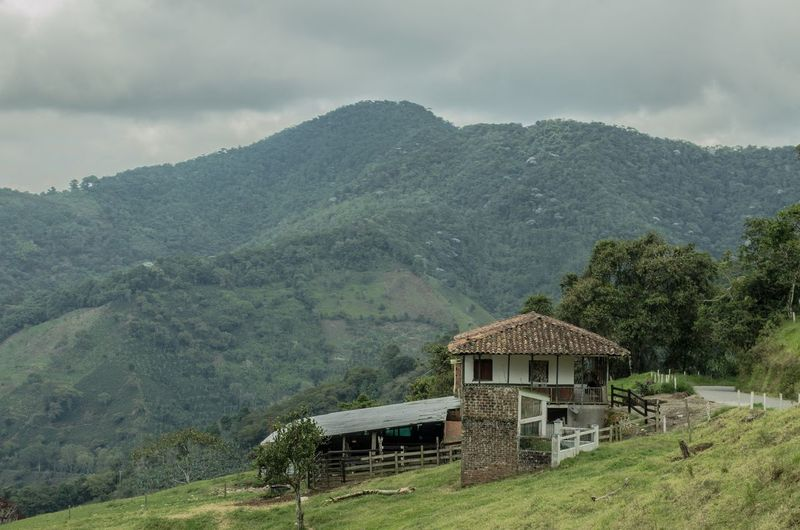 Camino de regreso EyeEm Nature Lover Eyeemphotography Eyeemcollection Montainscape Landscape Landscape_photography Montains    House Traveling Travel Photography EyeEm Selects Tree Mountain Rural Scene Tradition Thatched Roof Hut Architecture Sky