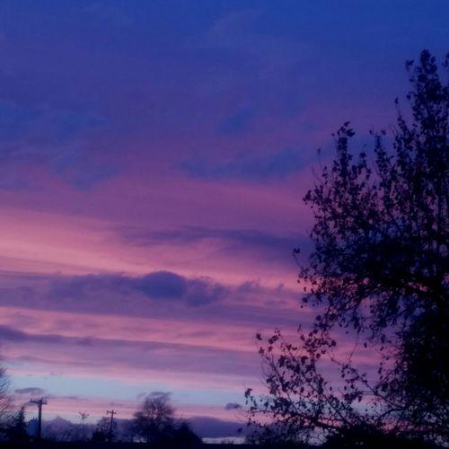 Beautiful Sunset! Pasco Was