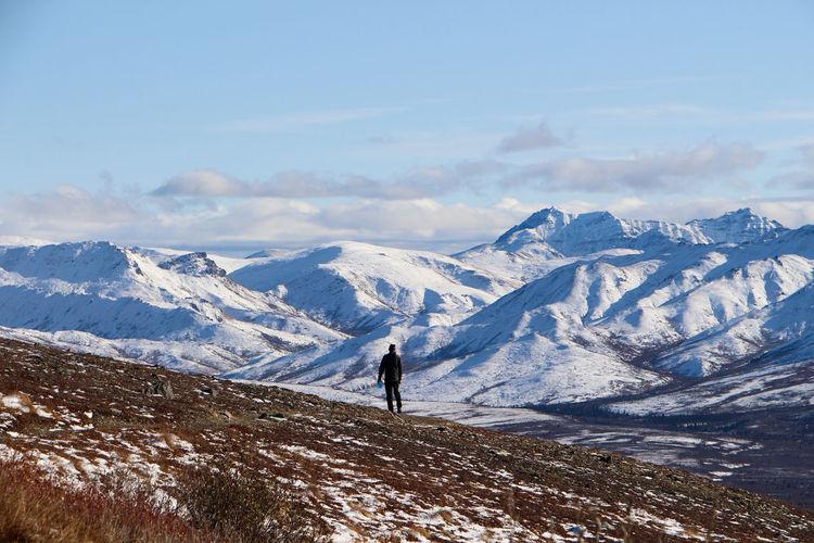 Mt denali wilderness