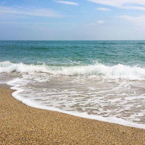 Amoureux de cette Méditerranée là ! Mer Plage Argeles PaysCatalan SudDeFrance igersfrance discoverlanguedocroussillon