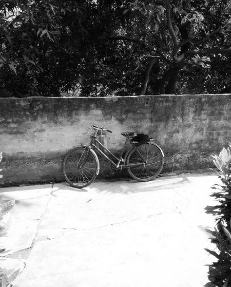 CyclingUnites Wheels On Work Black & White Lifestyles Outdoors