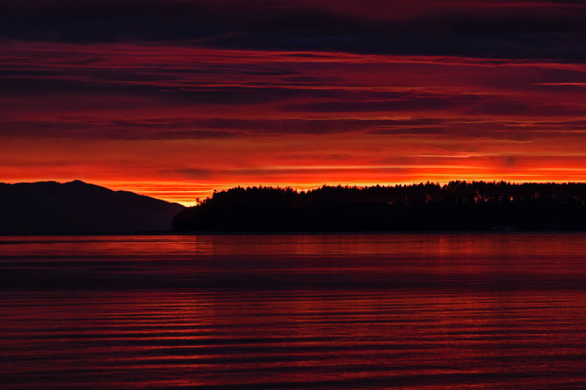Beauty In Nature Day Lake Nature No People Outdoors Scenics Silhouette Sky Sunset Tranquil Scene Tranquility Tree Water