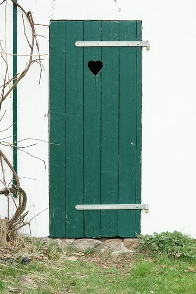 Toilet Door Closed Entrance Front Door Green Color Heart Ruins Dirty Retro Vintage Old Tranquility History Earth Closet Closet