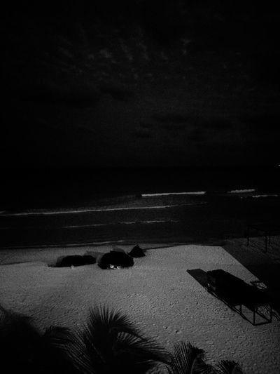 Cancun Cancunbeach Cancun Mexico Yucatán, México Black & White Beach Sand Sea Nature Outdoors Tranquil Scene Scenics