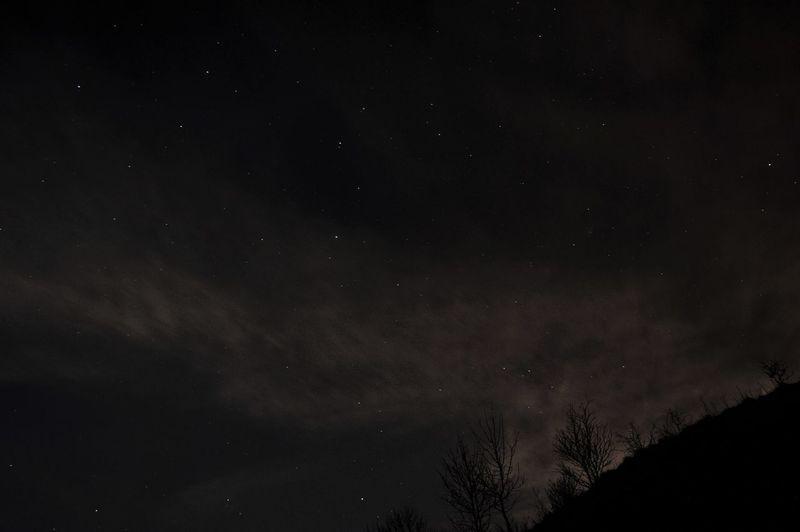 Stars in
