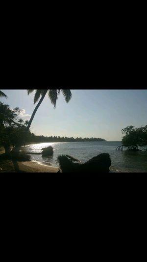 Samana Anochecer Playa