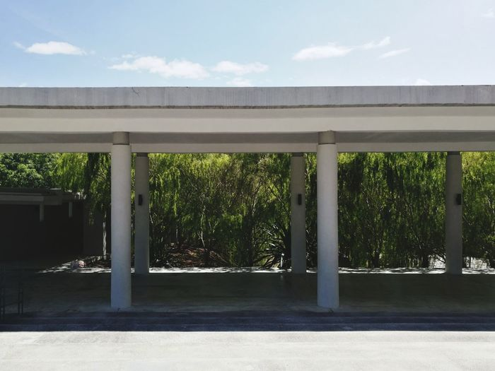 Minimalist Architecture Tree Architecture No People Outdoors Sky Day Morning Relax Built Structure Utar Architecture Nature Honor8 Huawei Fans Huawei Honor8 EyeEm Gallery EyeEm Nature Lover EyeEm Best Shots EyeEm Sell