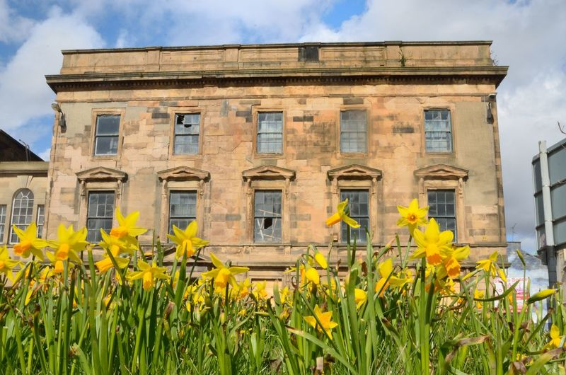 Architecture Building Building Exterior Built Structure City Cloud - Sky Daffodils Flowers Day Derelict Building Flower Flowering Plant Freshness Growth Low Angle View Nature No People Outdoors Plant Sky Travel Destinations Window Yellow