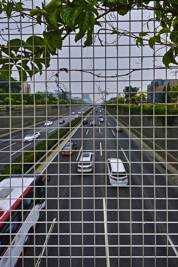 划地自囚,藤栅叶盖,便把大千,放诸身外。 wine Transportation Car Motor Vehicle Fence Plant City Outdoors Traffic Road Leaves Wine