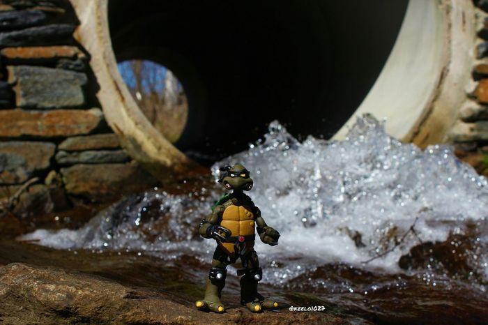 Toyphotography Toycommunity Toycollector Teenage Mutant Ninja Turtles
