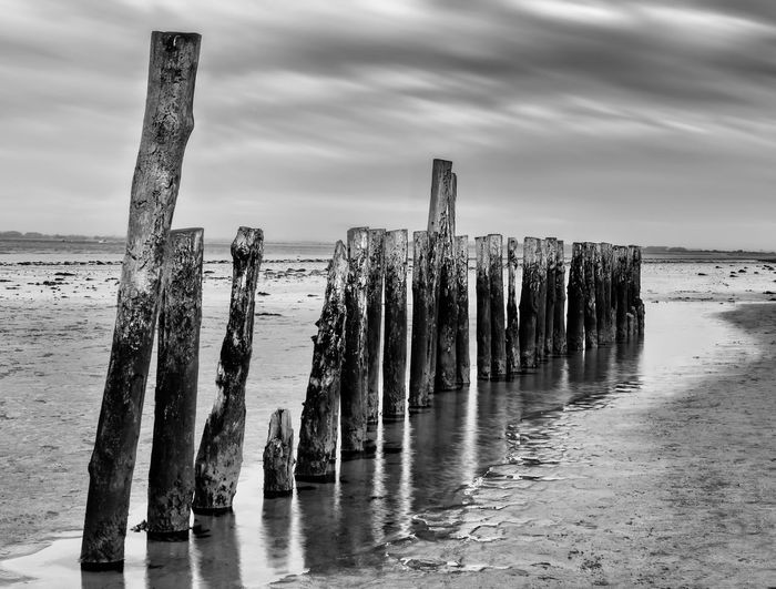 Black & White Abstract Art Scenics Backgrounds Screen Saver Seaside Wooden Posts Seascape Reflection In A Row