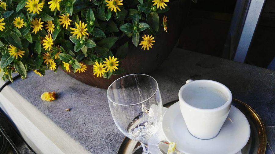 Aufwachhilfe Ready-to-work Cafe Kaffee Kaffeetasse Wasserglas Tableau Porzellanservice Service Blumentopf Blumen Ruhe Ruhepause