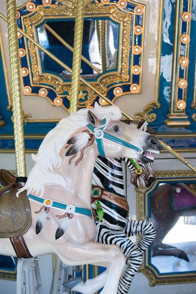 Amusement Park Amusement Park Ride Amusment Animal Representation Arts Culture And Entertainment Built Structure Carosel Carousel Carousel Horses Close-up Day Horse Illuminated Indoors  Multi Colored No People Ride