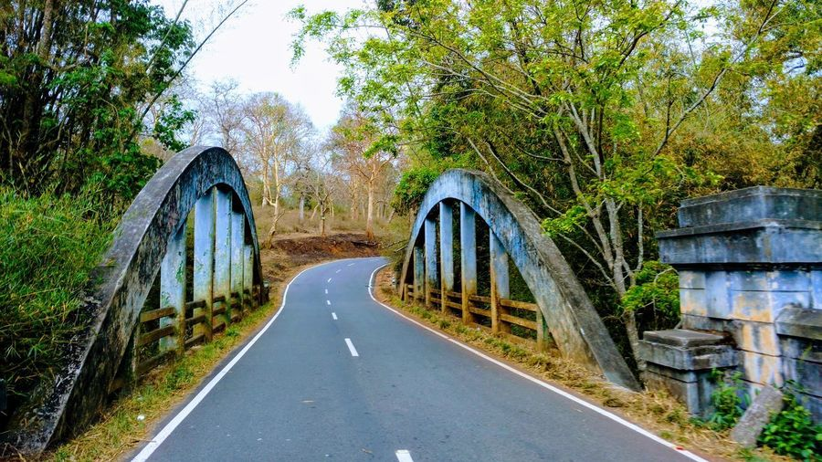 Bandipur National Park India Gate Of Bandipura Karnataka Bandipurforest Bandipur Bandipura Ooty Road Nice Road Road In Forest Forest Photography Forrest Adventure Gateway Gateway Of India Green Color Mansoon Session