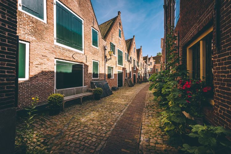 Old streets Photo EyeEm EyeEm Gallery EyeEm Best Shots Light Explore Travel Leading Lines Town Urban Middelburg Netherlands Holland Building Exterior Built Structure Architecture Building Plant Nature City Residential District No People Street Window Sky Day House Footpath Sunlight Decoration