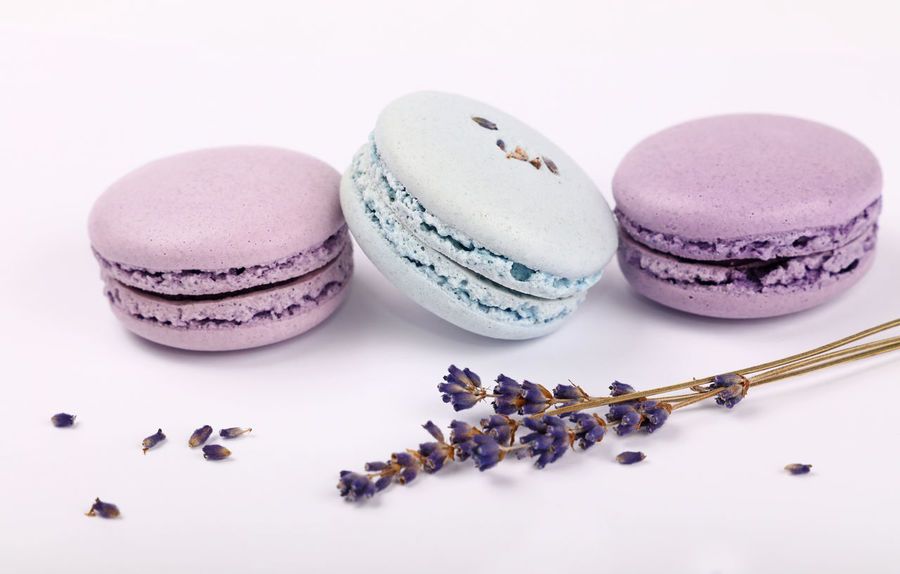 Fresh sweet macaroons dessert and lavender Blue Close-up Cuisine Day Dessert Dessert Food Food And Drink French Fresh Freshness Lavender Lavenderflower Macaron Macaroni Macarons Macaroon Macaroons No People Purple Ready-to-eat Sweet Sweet Food Sweets White Background