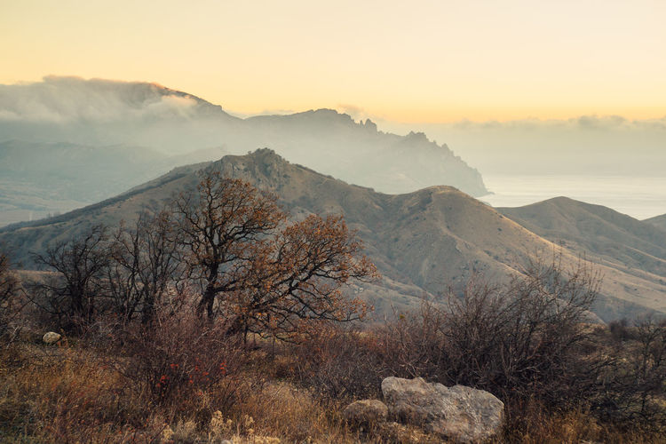 Foggy morning in the crimean mountains.