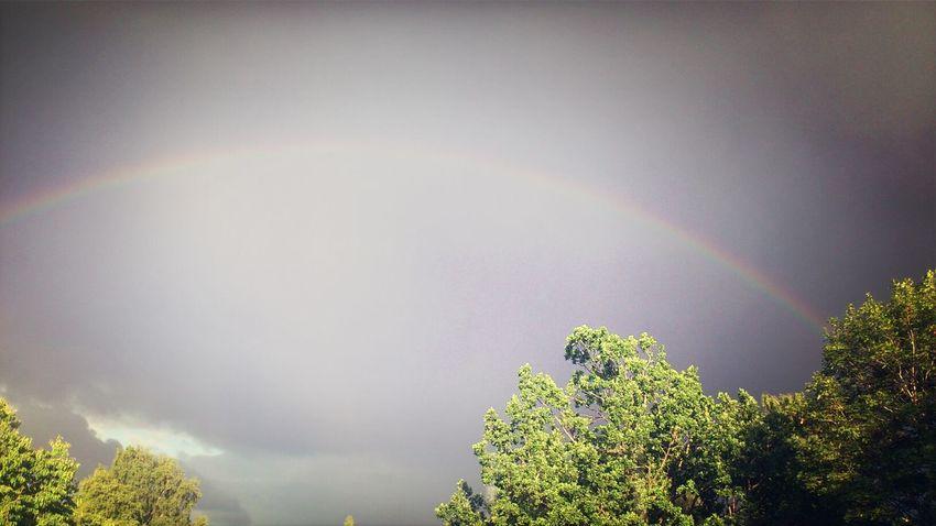 Overtherainbow Rainbow Outside