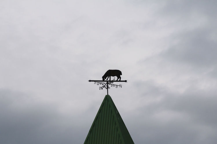 Sky Architecture Low Angle View Weather Vane Built Structure Cloud - Sky Nature Building Exterior Communication No People Outdoors Building Direction Guidance Day Roof High Section Animal Themes Animal Representation Meteorology