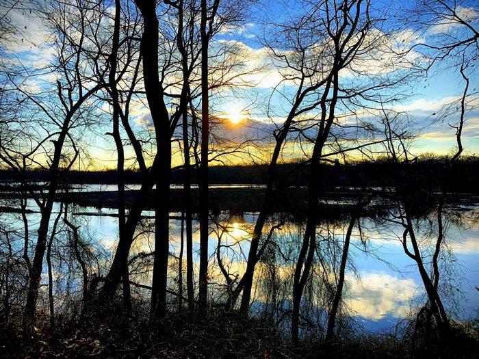 Water Reflection Lake Sky Tree No People Nature Sunset Beauty In Nature Tranquility Silhouette Scenics - Nature Plant Outdoors Cloud - Sky Tranquil Scene Waterfront Reflection Lake