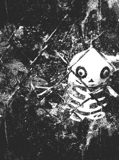 Halloween Horrors Skeleton Halloween