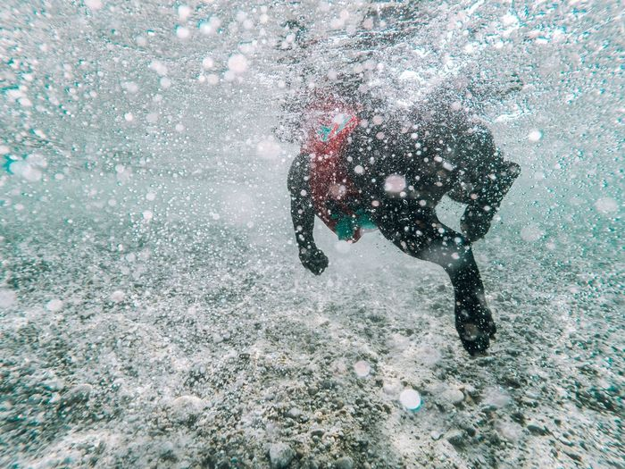 Adventure Sea Water Real People Scuba Diving Leisure Activity One Person Motion Exploration Men Lifestyles Sport Swimming Only Men Nature Underwater One Man Only Healthy Lifestyle Day Outdoors UnderSea Underwater Photography Underwater Dog