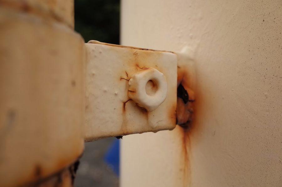 Rust Rustygoodness 錆 錆び太くん Rusty これって固定されているんだろうか?
